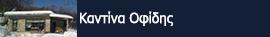 Καντίνα Οφίδης